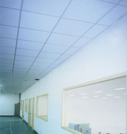 Designeru0027s Style Plaster Ceiling At Retail Shops / Food Outlets